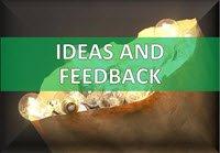 Suggestion Box - Ideas - Feedback