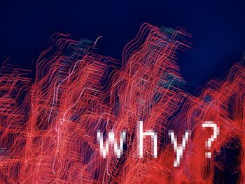 "Explore Your Book's Reasons ""Why"""