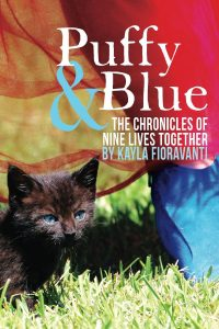 Puffy & Blue Cover Small