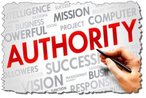 Course: Own Your Niche: Become an Authority and Build a Bigger, Better Audience