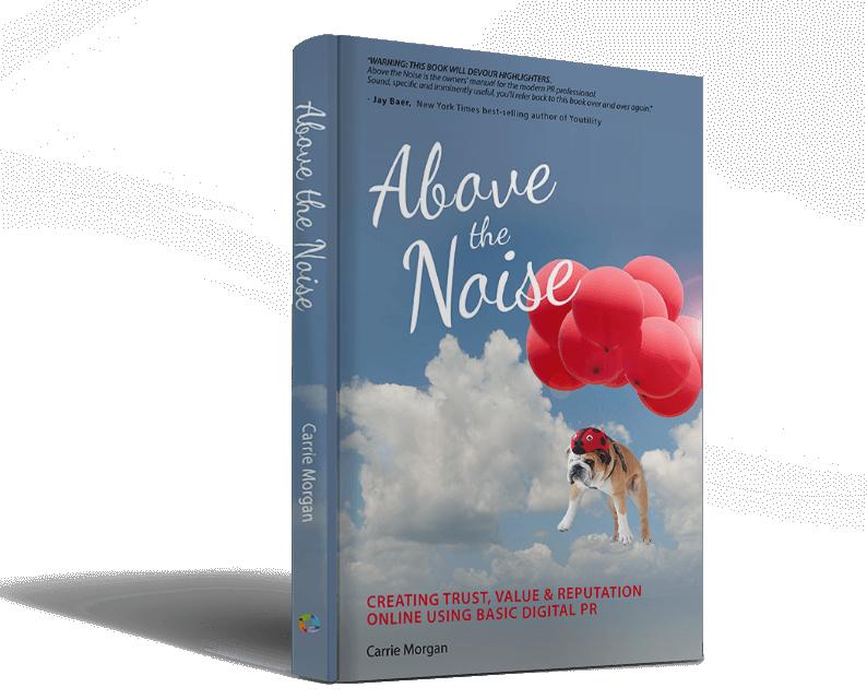 Book Award Winner: Above The Noise: Creating Trust, Value & Reputation Online Using Basic Digital PR