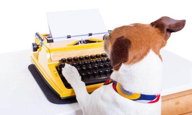 How to Write a Dazzling Author Bio