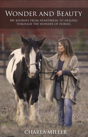 Member of the Week: Charla Miller, Author of Wonder And Beauty: My Journey From Heartbreak To Healing Through the Wonder of Horses
