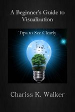 A Beginner's Guide to Visualization