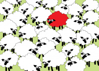 The Red Sheep