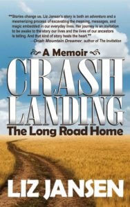 Crash Landing - KDP digital cover