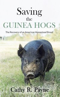 Saving the Guinea Hogs