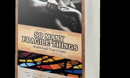 BOOK AWARD WINNER: SO MANY FRAGILE THINGS